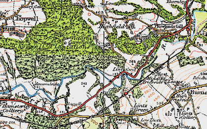 Old map of Lintzford Wood in 1925