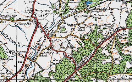 Old map of Liss in 1919