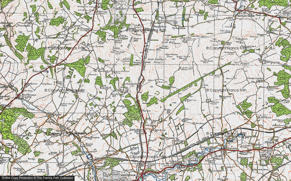 Old Map of Historic Map covering Wormley Copse in 1919