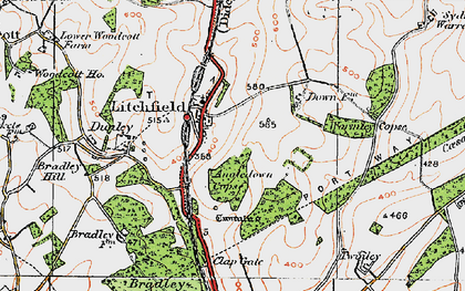 Old map of Wormley Copse in 1919