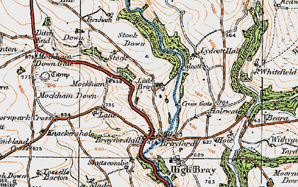 Old map of Wort Wood in 1919