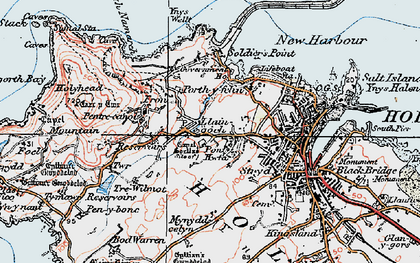 Old map of Ynys Wellt in 1922