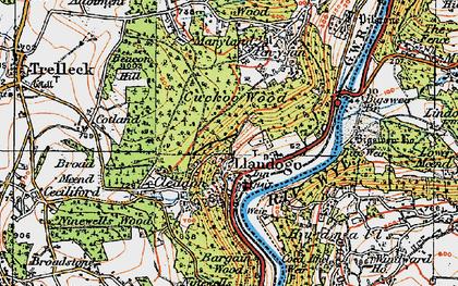 Old map of Llandogo in 1919