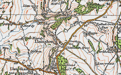Old map of Woolpitch Wood in 1919