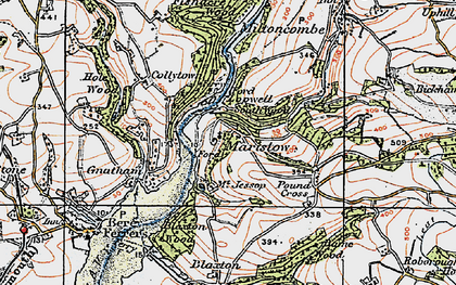 Old map of Bame Wood in 1919
