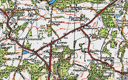 Old map of Lower Beeding in 1920