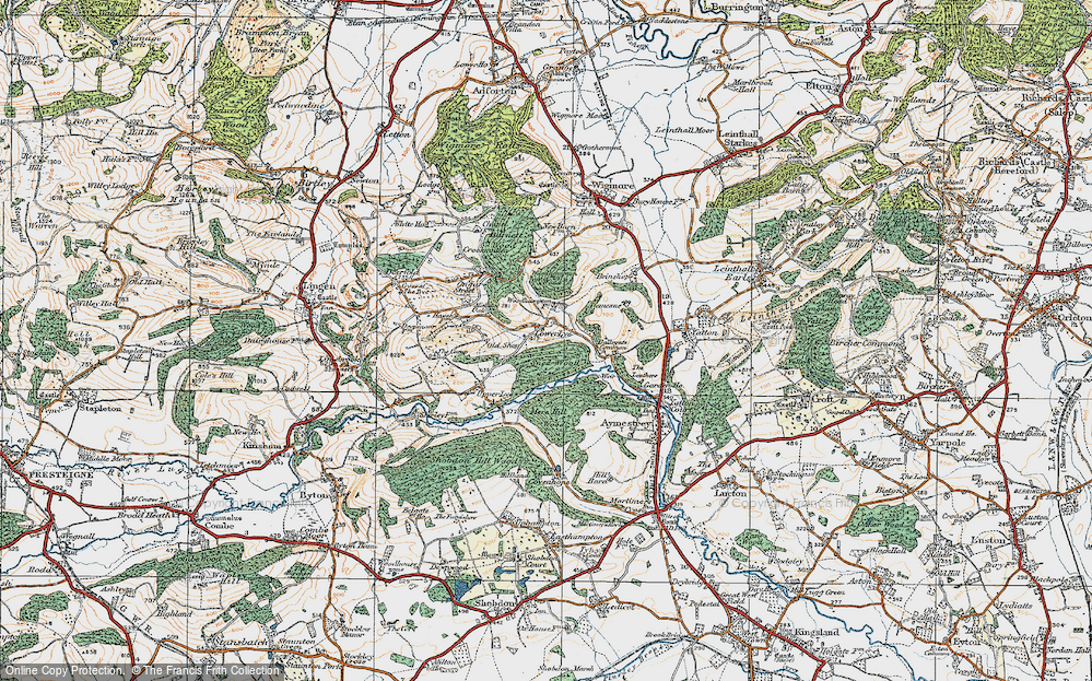 Old Map of Historic Map covering Woodhampton Wood in 1920