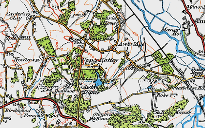 Old map of Awbridge Danes in 1919