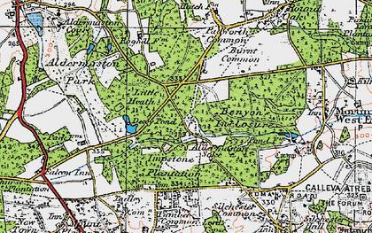 Old map of Aldermaston Soke in 1919