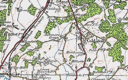 Old map of Ashmore Green in 1919