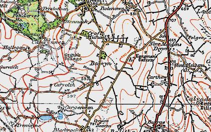 Old map of Boswyn in 1919