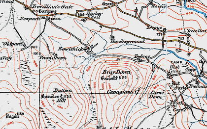 Old map of Bowithick in 1919
