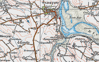 Old map of Dinas in 1919