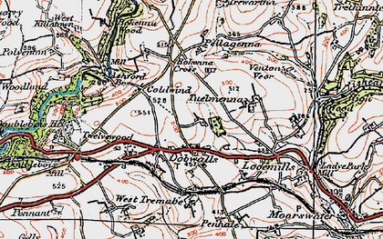 Old map of Dobwalls in 1919