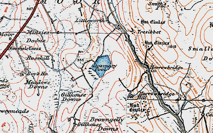 Old map of Dozmary Pool in 1919