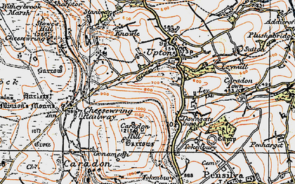 Old map of Dunslea in 1919