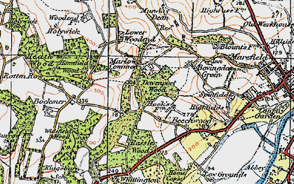 Old map of Marlow Common in 1919