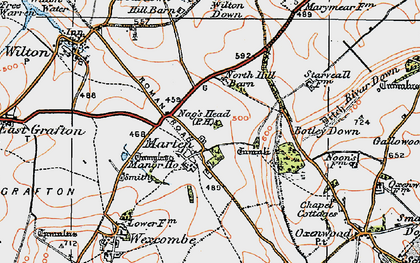 Old map of Wilton Down in 1919