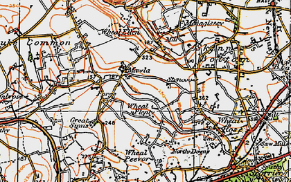 Old map of Wheal Plenty in 1919