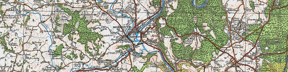 Old map of Dixton in 1919
