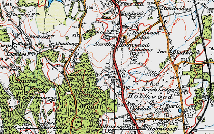 Old map of Abinger Forest in 1920