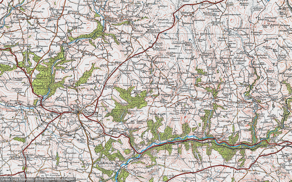 Old Map of Historic Map covering Lidcutt Wood in 1919