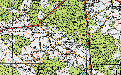 Old map of Minstead in 1919