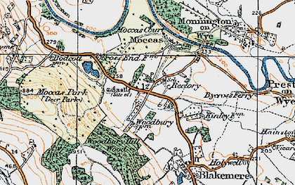 Old map of Woodbury Hill Wood in 1920