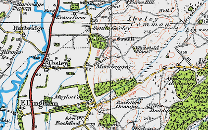 Old map of Whitefield Plantn in 1919
