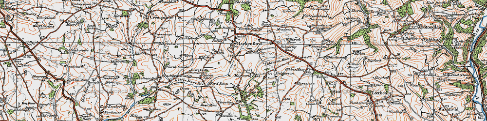 Old map of Witheridge Moor in 1919