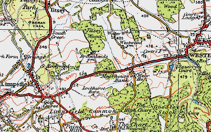 Old map of Titsey Wood in 1920