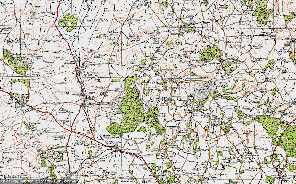 Old Map of Historic Map covering Limmer Pond in 1919