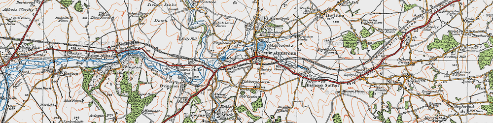 Old map of Tichborne Down in 1919