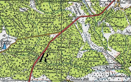 Old map of Wooson's Hill Inclosure in 1919