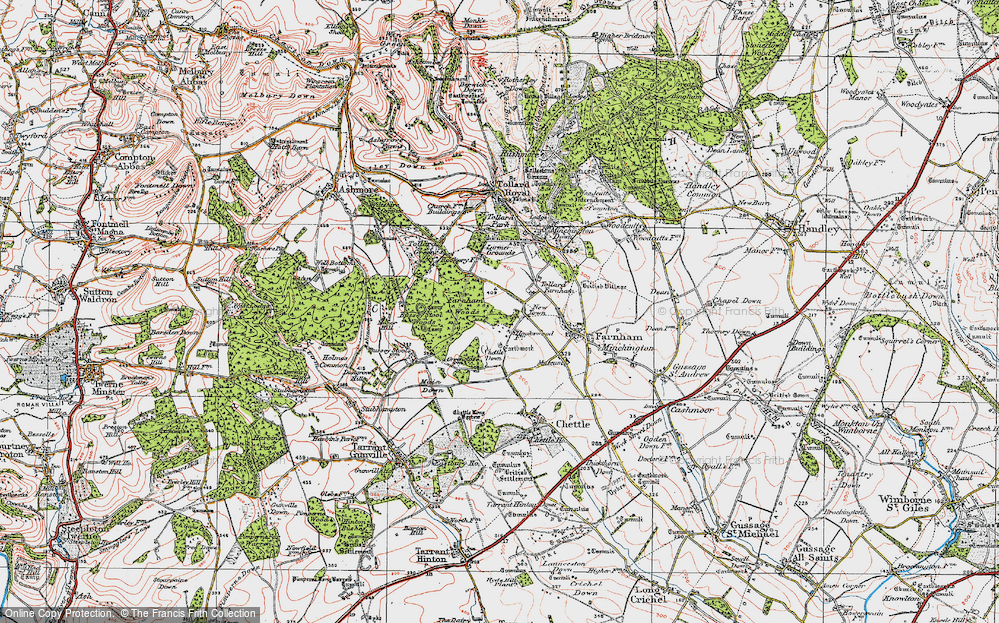 Old Map of Historic Map covering Larmer Tree Gdns in 1919
