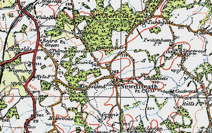 Old map of Newdigate in 1920