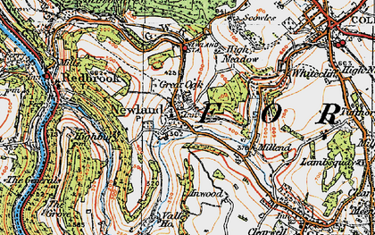 Old map of Newland in 1919