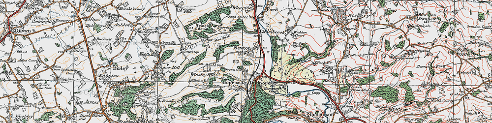 Old map of Wig Wood in 1920