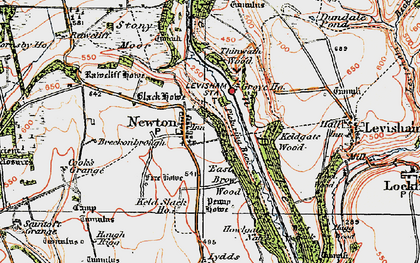 Old map of Yorfalls Wood in 1925