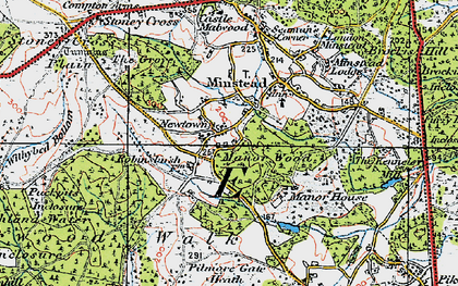 Old map of Wick Wood in 1919