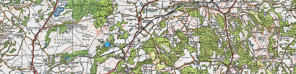 Old map of Wheatsheaf Common in 1919