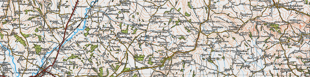 Old map of Westhay in 1919