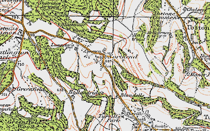 Old map of Wormsley Park in 1919