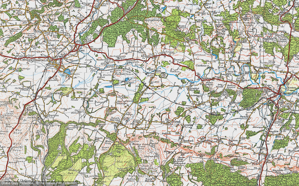 Old Map of Nyewood, 1919 in 1919