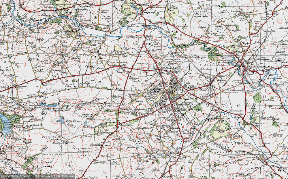 Old Map of Historic Map covering Bardner Wood in 1925