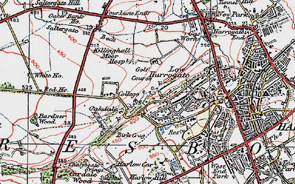 Old map of Bardner Wood in 1925