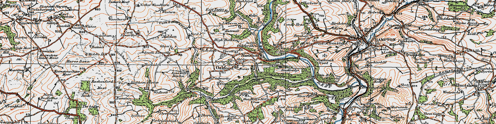 Old map of Westbrook Wood in 1919
