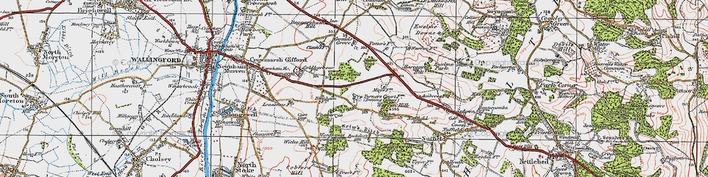 Old map of Wicks Wood in 1919