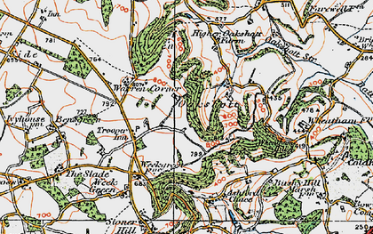 Old map of Wheatham Hill in 1919