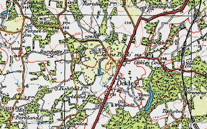 Old map of Ockley in 1920